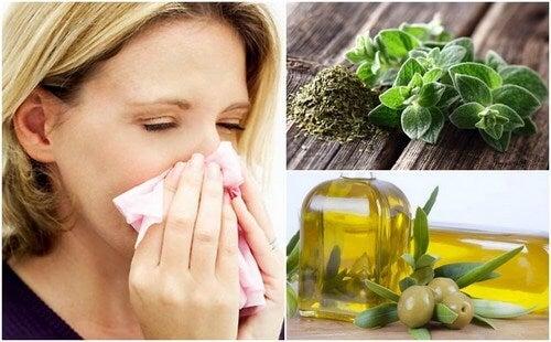 Origano e olio d'oliva per proteggere il sistema respiratorio