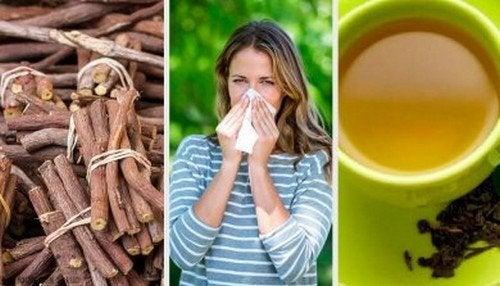 4 alternative naturali per combattere la rinite