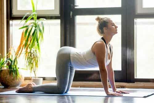 Routine yoga per alleviare il mal di schiena