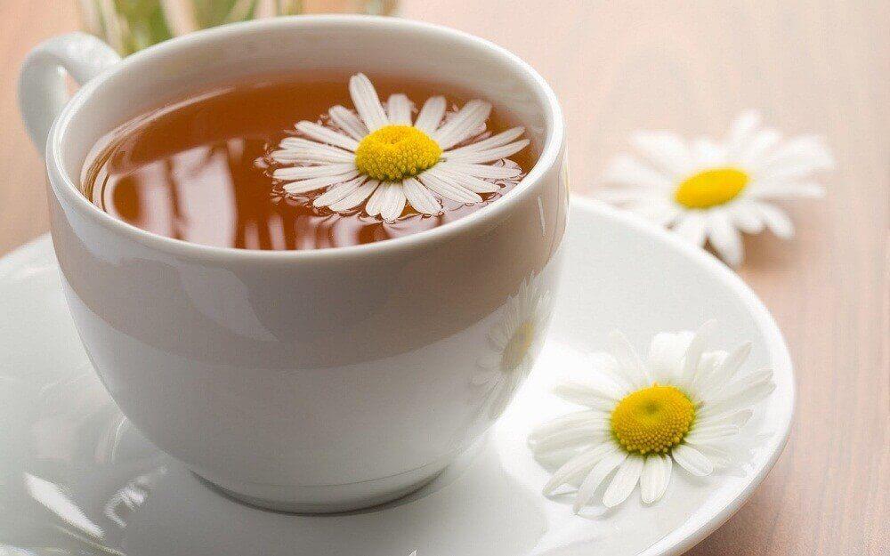 Camomilla nella tazza e fiori di camomilla