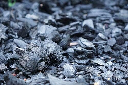 Il carbone vegetale.