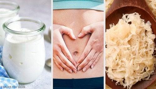 Cibi probiotici per il benessere della flora intestinale