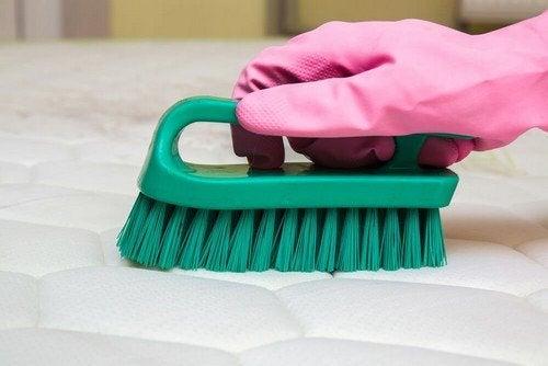 Cattivi odori del materasso: segreti di pulizia