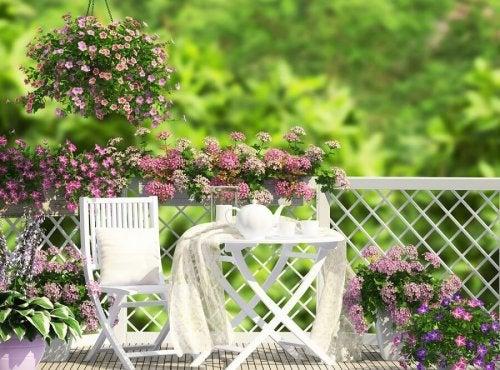 Mini Giardino Sul Balcone : Orto sul balcone erbaviola grazia cacciola