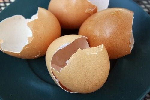Gusci d'uovo: 6 modi per riutilizzarli