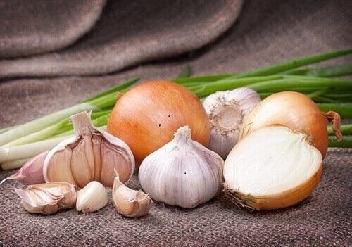 Minestra di aglio e cipolla per migliorare le difese