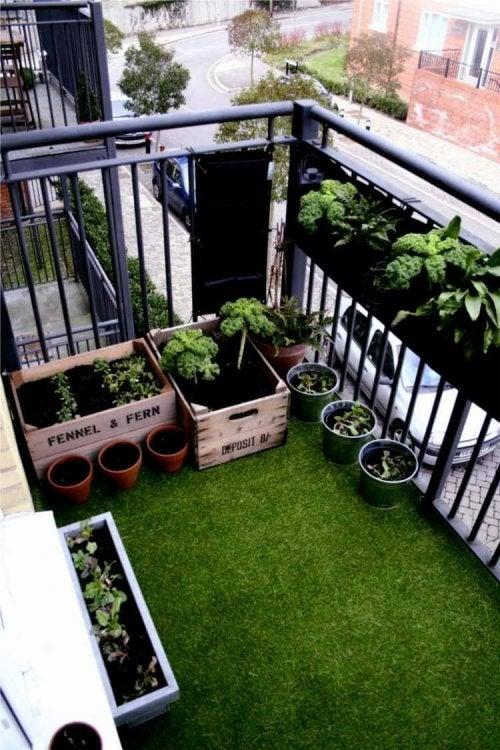 Esempio di mini giardini urbani