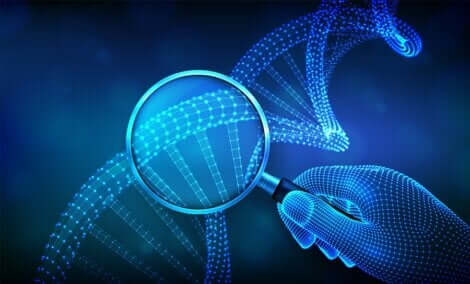 DNA gemelli monozigoti ed eterozigoti