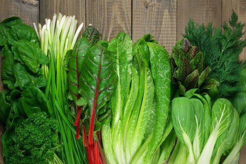 Mazzolini di verdura a foglia verde
