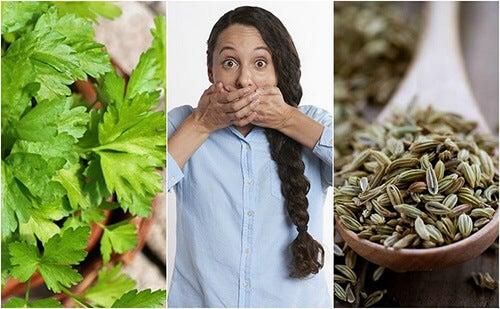 Alitosi stomacale: 5 rimedi naturali per combatterla
