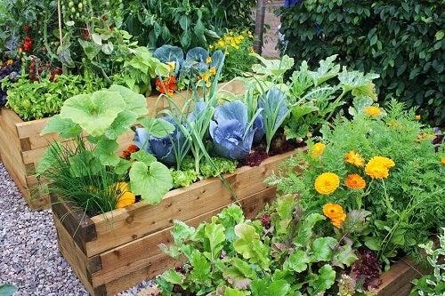 Decorare il giardino: 6 facili soluzioni