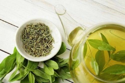 Infuso di tè verde