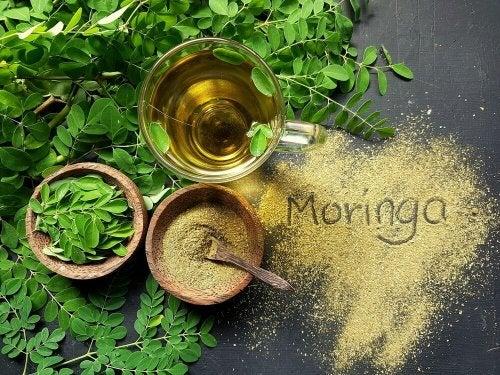 Foglie di Moringa oleifera per trattare i sintomi della fibromialgia