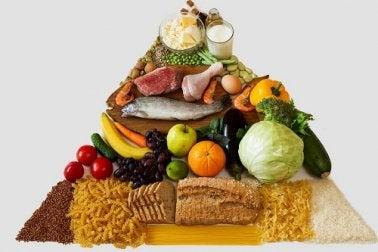 Nuova piramide alimentare