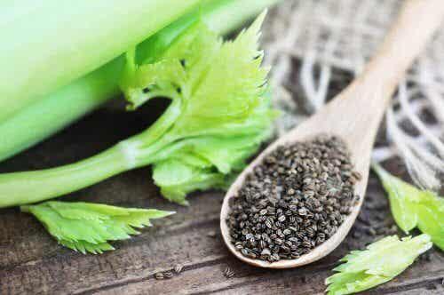 Semi di sedano, un rimedio naturale per l'ipertensione