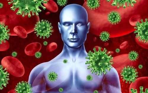 Il sistema immunitario