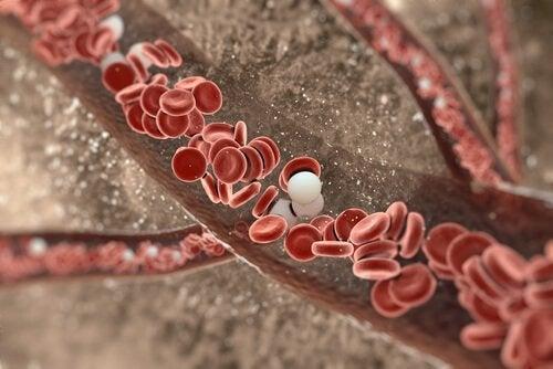 Arterie pulite con la curcuma