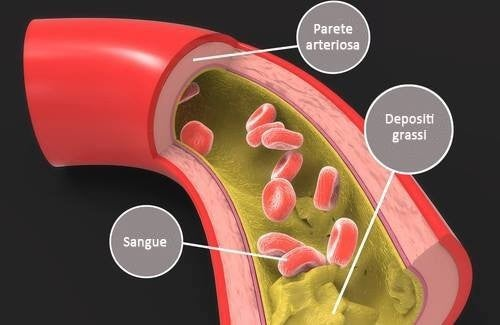 colesterolo nel sangue