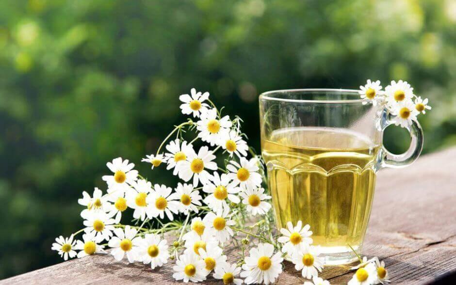 La camomilla tra i rimedi naturali per la rosacea
