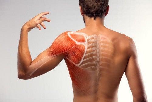 Crampo muscolare: ecco come calmarlo