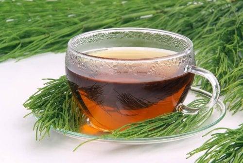 Tè verde ed equiseto per dimagrire