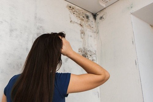 Muffa sul soffitto del bagno e soluzioni naturali