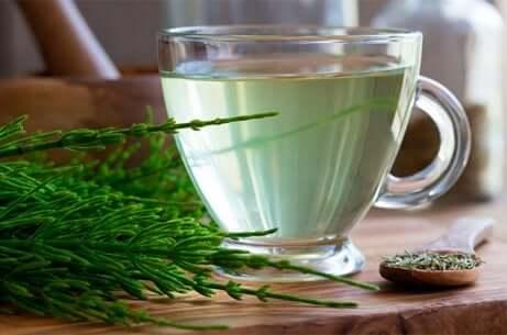 Equiseto e tè verde.