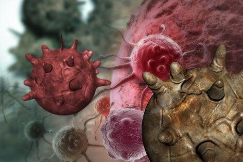 Alimenti cancerogeni, miti da conoscere e sfatare