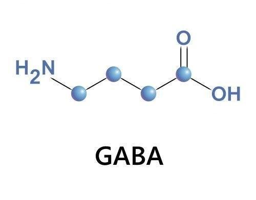 Formula gaba
