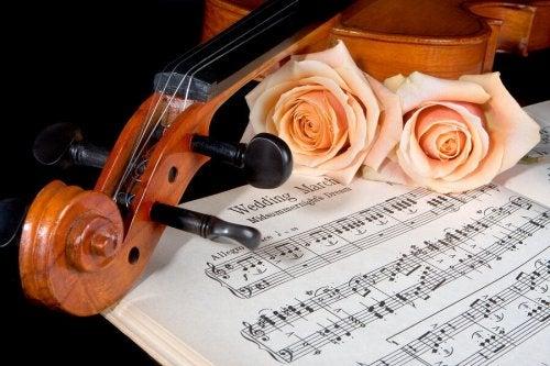 Pentagramma, rose e violoncello