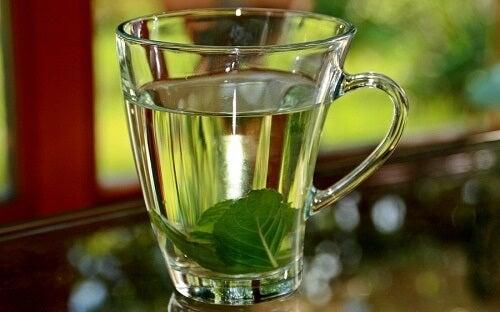 Un bicchiere con acqua e basilico