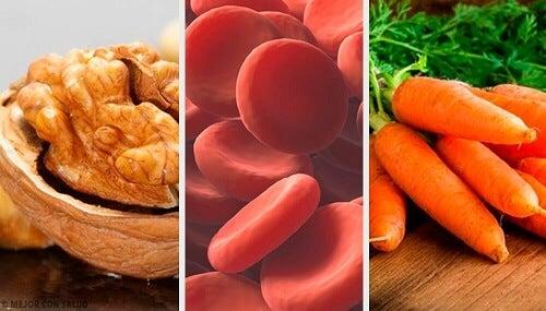 Aumentare i globuli rossi nel sangue