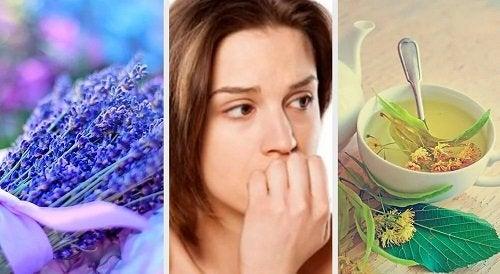 Ansiolitici naturali per rilassare il sistema nervoso