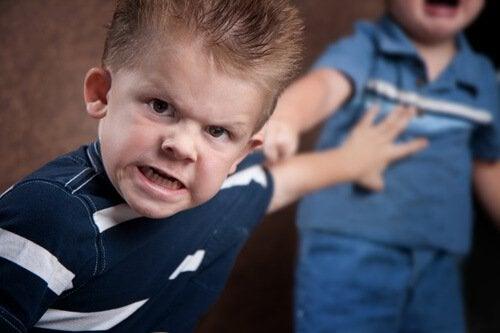 Bambino violento plusdotazione intellettiva