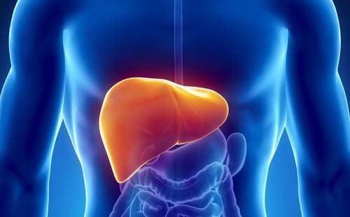 Fa bene al fegato mangiare granola