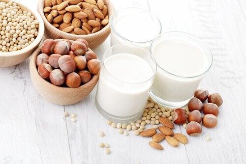 Preparare il latte vegetale in casa