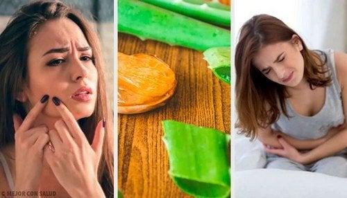 Aloe vera per la salute: 6 modi per usarla al meglio