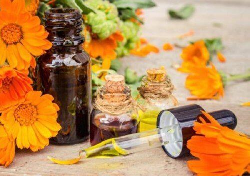 Arnica e olio d'oliva