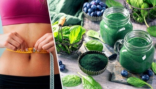 La spirulina e i benefici per dimagrire
