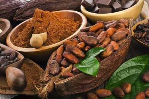 Cacao e flavonoidi