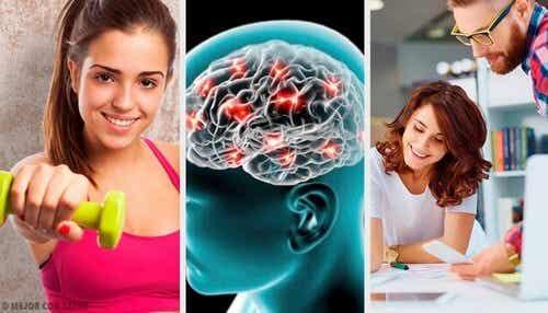 Consigli neurobiologici per essere felici