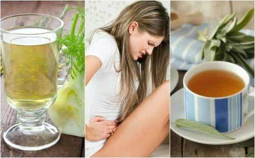 Curare la diarrea con rimedi a base di erbe