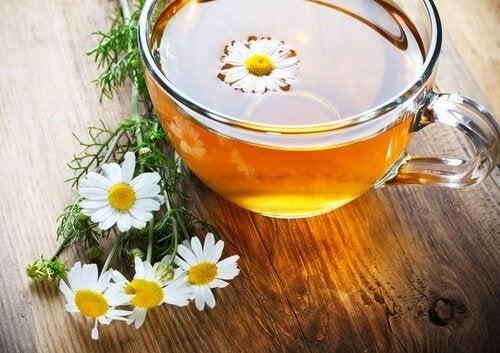 Infuso di camomilla trattamenti topici alle erbe per la psoriasi