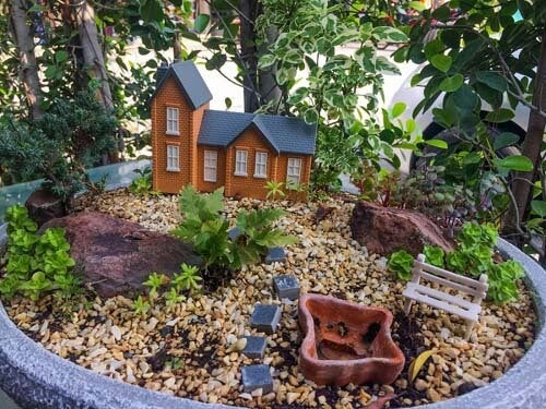 Creare un mini giardino: 6 fantastiche idee