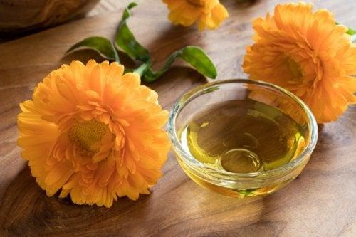 Olio di calendula trattamenti topici alle erbe per la psoriasi