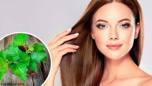 Curare i capelli con l'ortica: cosa fare