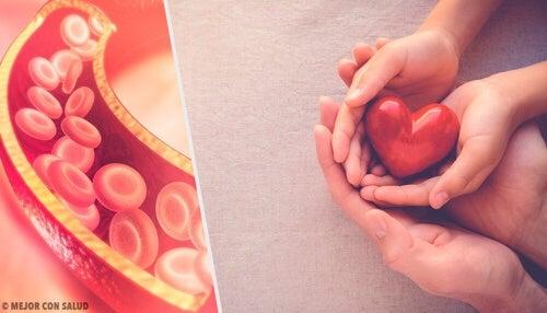Tutto ciò che dovete sapere sul colesterolo