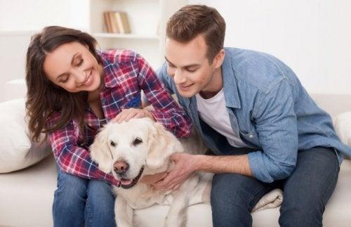Benefici di avere un cucciolo