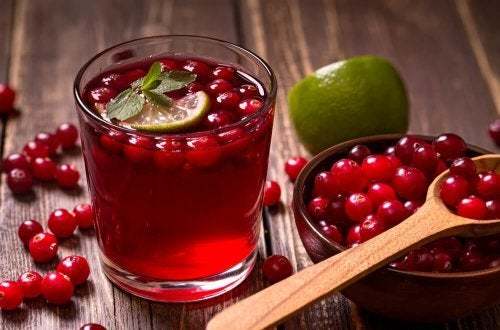 Bevanda ai mirtilli
