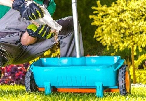 Consigli di giardinaggio per nutrire le piante